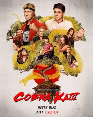 cobra Kai || Season 3