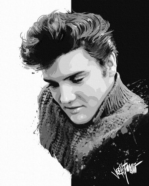Elvis In Art 🧡