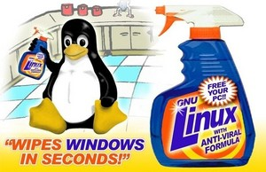 Linux - wipes Windows in seconds!