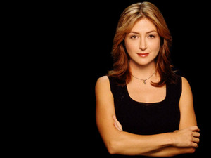 Sasha Alexander - Hot And Sexy