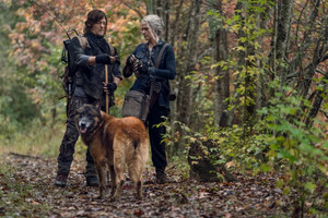 10x18 ~ Find Me ~ Carol, Daryl and Dog