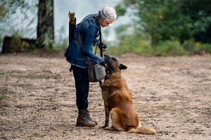 10x18 ~ Find Me ~ Carol and Dog