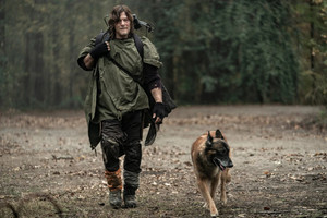 10x18 ~ Find Me ~ Daryl and Dog
