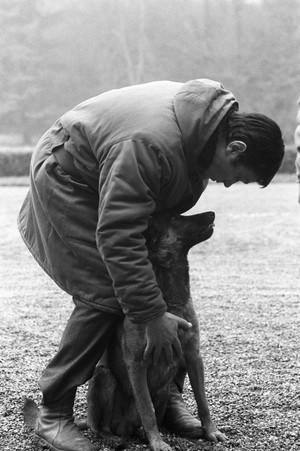 Alain Delon and His Dog 💙