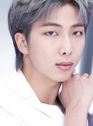 BTS, THE BEST RM