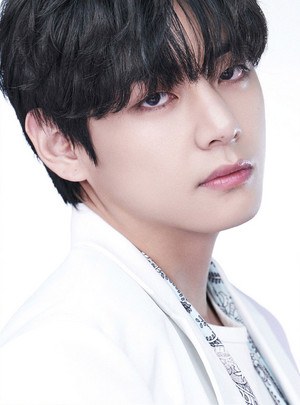 BTS, THE BEST V