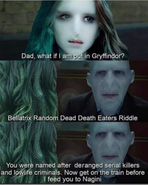 Bellatrix misceláneo Dead Death Eaters Riddle