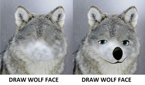 Draw lobo Face (Humphrey's face)