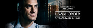 Law and Order: Organized Crime Banner