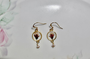Real Dried fiore Earrings