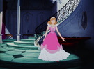 Cinderella's kulay-rosas and white dress